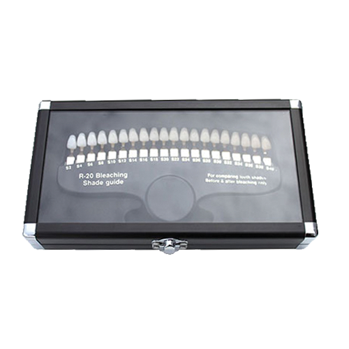 r20 teeth shade guide storage case